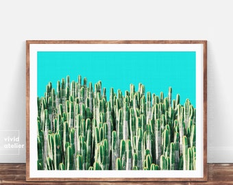 Cactus Print, Cactus, Cactus Photography, Cactus Plant Print, Cactus Poster, Succulent Print, Botanical Print, Cactus Art, Cactus Photo