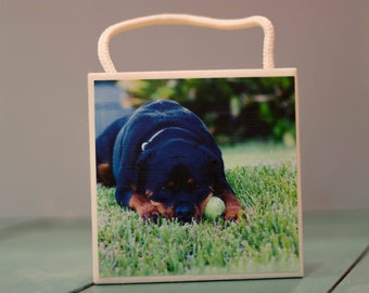 Ceramic Tile Wall Art, Puppy Playing with a Ball, Home Decor, 4x4, Decorative,display, Decor, living decorations, gift, under 20, Rottweiler