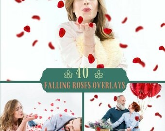 40 Falling Roses Overlays, Falling  Petals Overlay, Photoshop Overlay, Rose Petals, Wedding Overlays, Valentine's Day, Love,Digital backdrop