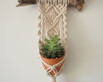Macrame Plant Hanger Wall Hanging - for mini pots. Indoor Vertical Garden, Small Size, Gift, Home Decor