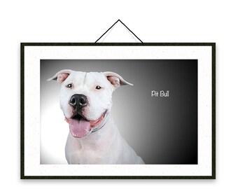 Pit Bull - Dog breed poster, wall sticker, nursery decor, dog print, wall print, nursery print, shabby print   Tropparoba - 100% made Italy