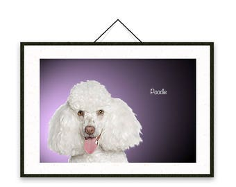 Poodle - Dog breed poster, wall sticker, nursery decor, dog print, wall print, nursery print, shabby print   Tropparoba - 100% made in Italy