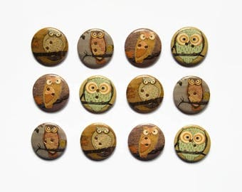 8 Owl Buttons - Large Buttons 30mm - Cartoon Bird Button - Owls - Cute Animal Buttons Graduation - Wooden Buttons Owls - Barn Owl Buttons