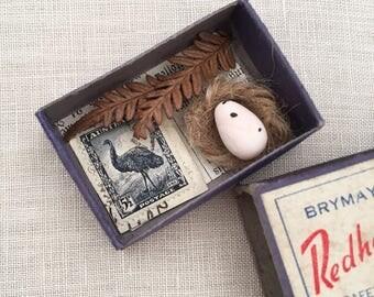 Vintage Curio collection - natural history - stamp fern botanical - emu bird egg nest - matchbox assemblage art cabinet of curiosities #0625