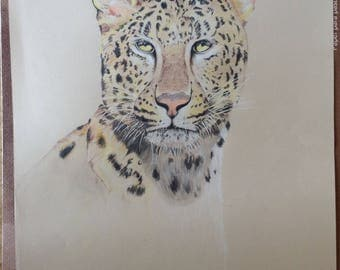 Leopard Bust Colored Pencil Drawing, Hand-drawn on Tan Paper