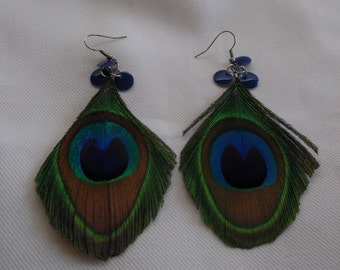 Peacock feathers, blue and green on stainless steel earrings.