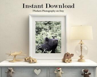Farm Animal Download; Shower Gift; Gift for Kids; Printable Home Decor; Pig Nursery Decor; Farm Animal Prints Nursery; Animal Wall Art.