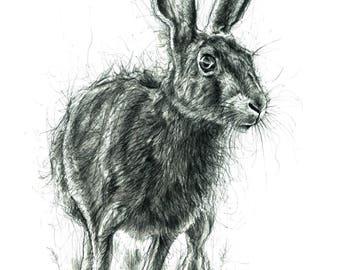 Mr Hare Print