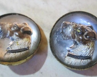 "2 Small Design Under Glass Vintage Buttons (DOGS) (1/2"" each)"