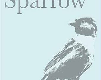 The Lost Sparrow  poetry + art + short stories