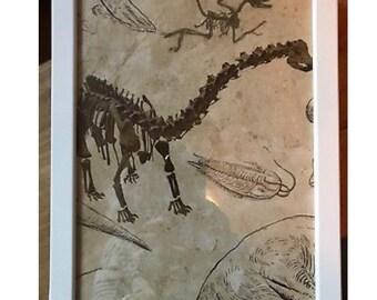 Framed dinosaur picture
