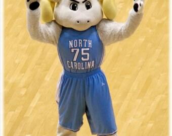 UNC-Chapel Hill Basketball Rameses