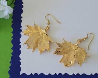 Silver Leaf Earrings, Sugar Maple Leaf, Real Leaf Earrings, Small Real Leaf Earrings, Canadian Maple, Gold Plated Leaf, Nature, LESM198