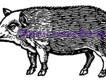 Woodcut PIG clip art vintage hog . digital Image file . instant download . printable graphic pig clip art . label art woodcut hog sow boar