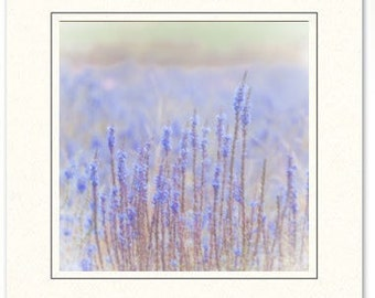 Blue Flowers Photography Card Set of 3 - Photography Greeting Cards -  Photography Flower Cards - Greeting Card Set