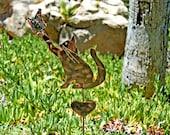 SOLD / Cat Yard Art Metal Garden Plant Stake / Copper Garden Art / Cat Sculpture / Kitty Art / Pet Lovers Garden Gift