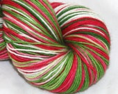 Watermelon--Alley Cat SS--SW merino/nylon