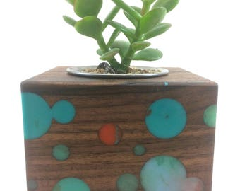 Walnut succulent planter with  inlaid resin bubble design - perfect 5th wedding anniversary gift