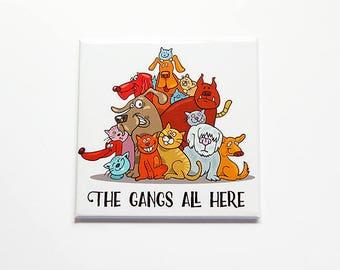 Cat magnet, Dog magnet, cats and dogs, Fridge magnet, magnet, Stocking Stuffer, Dog lover, Cat lover, lots of pets, Gift for Vet (7812)