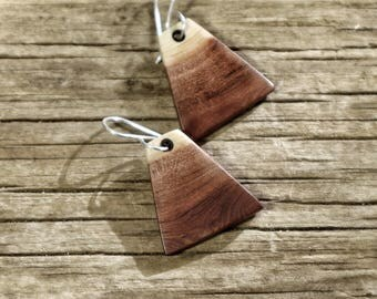 Desert Sunset Earrings. Manzanita Wood