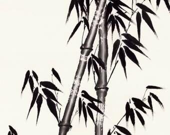 Summer Bamboo Original Chinese Brush Painting