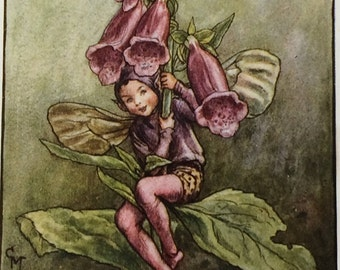 1940's Book Plate-Cicely Mary Barker-The Flower Fairies-Foxglove-Fairyland-Matted-Ready to frame-Nursery-Home decor
