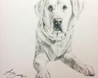 CUSTOM Pet Portrait (Black and White Photo-realistic Style)
