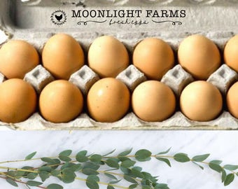 Skinny Egg Carton Stamp - Custom Printed Egg Carton Stamp - Extra Long Stamp - Fresh Eggs Stamp - Farm Name Stamp - Thin Chicken Coop Stamp