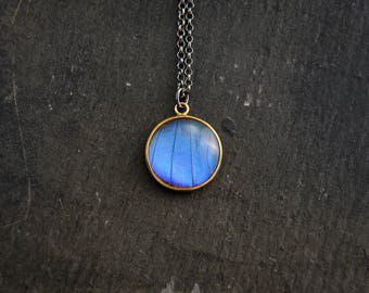 Real Butterfly Wing Necklace Gold Butterfly Pendant Blue Morpho Butterfly Necklace Sterling Silver Butterfly Jewelry Gift For Mom Mother