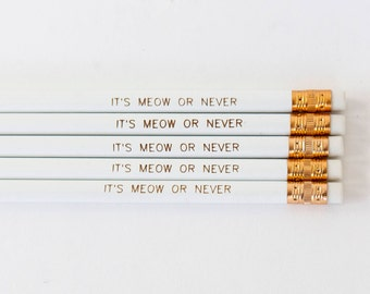 It's Meow or Never Round Pencils, Pencils with quotes, Cat Lover Gift, Crazy Cat Lady, Cute Desk Accessories, Back to School