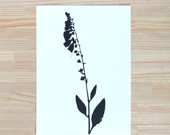 Botanical screen printing print / Botanical illustration / Herbarium / Home decor / Wall art / Digitalis purpurea / Foxgloves
