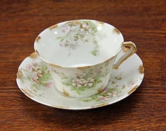 Antique Theodore HAVILAND Porcelain Demitasse Cup & Saucer   Schleiger 146 APPLE BLOSSOMS   Gold Gilt Trim   Limoges France   So Pretty!