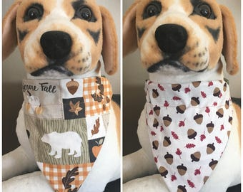 Reversible Slide On Bandana Fall Autumn Acorns Nature Over The Collar 2 in 1 Cats Dogs