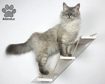 CAT STAIR – Goes Up Right