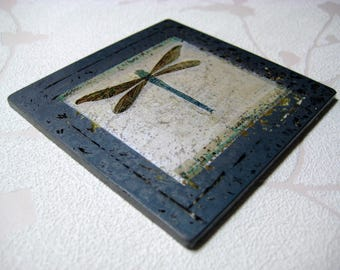 Dragonfly Specimen Glass Coaster