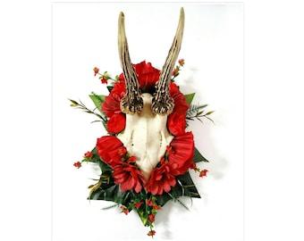 Real deer skull antlers animal bones taxidermy flowers nature display on wooden shield Oddities home decor