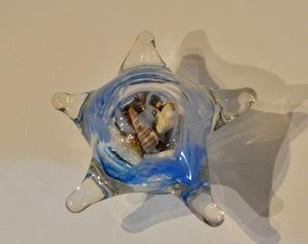 Glass Blown Starfish