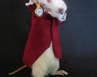 "taxidermy rat ""fairy tale"" taxidermy cabinet of curiosities rat rat odditties"