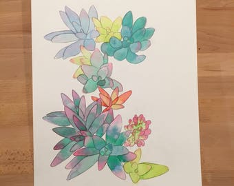 Succulents watercolor