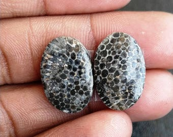 New year sale 15.80cts Black Coral Pair natural Gemstone ,cabochon , smooth, oval  shape, 18x12x3mm size, AM96
