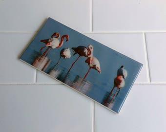 Bathroom Tiles - Custom Printed - Birds and Marine Life - Unique Bathroom Feature Tiles for your renovation or interior design