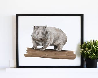The Common Wombat // White Collection