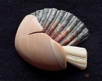 Neocon Shell Pin cinquantasei