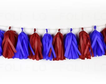 FIREWORKS NIGHT Tassel Garland | Festive Garland | Baby Shower Garland | Gender Reveal Garland | Nursery Garland | Birthday Garland | 15