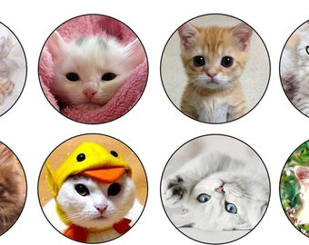 EDIBLE Cute Kittens Wafer Cupcake Toppers