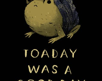 toaday was a good day toad T-shirt/ funny toad shirt / cute toad / frog shirt/ funny animals shirt / today was a good day shirt! ice cube