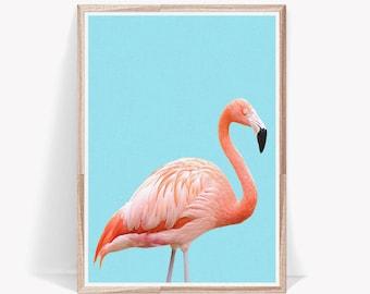 Flamingo Print,Pink Flamingo,Flamingo Poster,Pink Flamingo Poster,Flamingo Wall Art,Flamingo Digital Print,Flamingo Art,Flamingo Wall Art