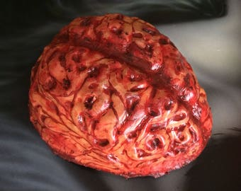 Human Brain Latex Prop Horror Art Halloween