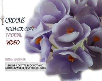 Video tutorial crocus from polymer clay