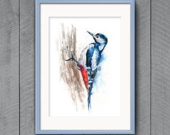 Fine Art Print of Original A Greater Spotted Woodpecker Watercolor Painting Signed A3 A4 Giclee Impressionist Wildlife Animal Garden Bird